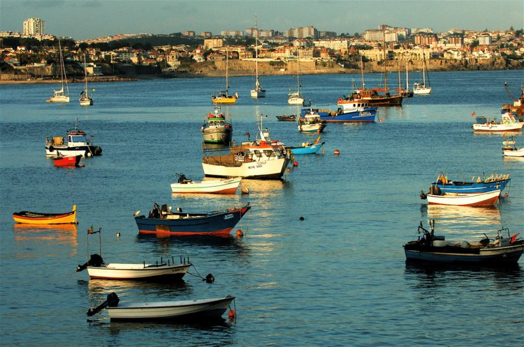 Cascais-fishing