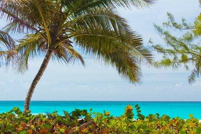 caribbean-sailing-vacations-grenada-yacht-charter-sailo
