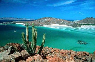sailing-in-mexico-la-paz-boat-rental-sailo