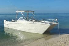 thumbnail-3 World Cat 27.0 feet, boat for rent in Key West, FL