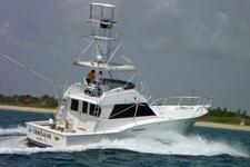 Come fish or just cruise Miami with us!