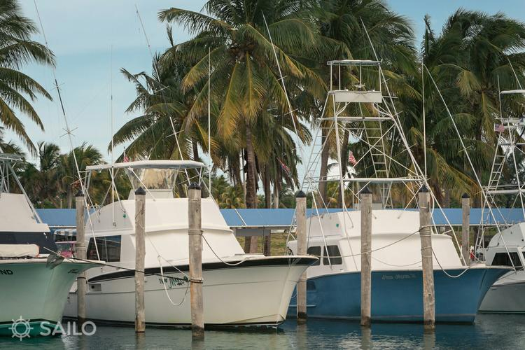 Discover Miami Beach surroundings on this Sports Hatteras boat