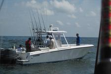 thumbnail-2 Contender 36.0 feet, boat for rent in Galveston, TX