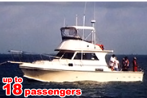 Go Deep Sea Fishing on this 42' Sportfisherman
