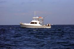 Up to 22 persons can enjoy a ride on this Convertible boat