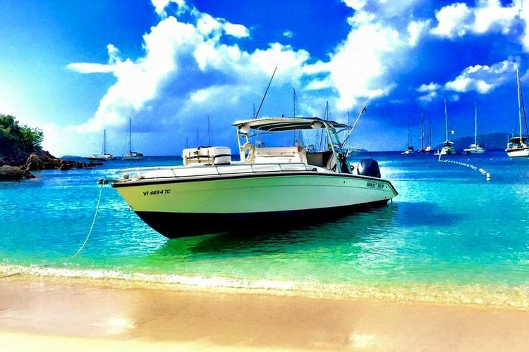 Discover Red Hook surroundings on this 350 SF Marlin boat