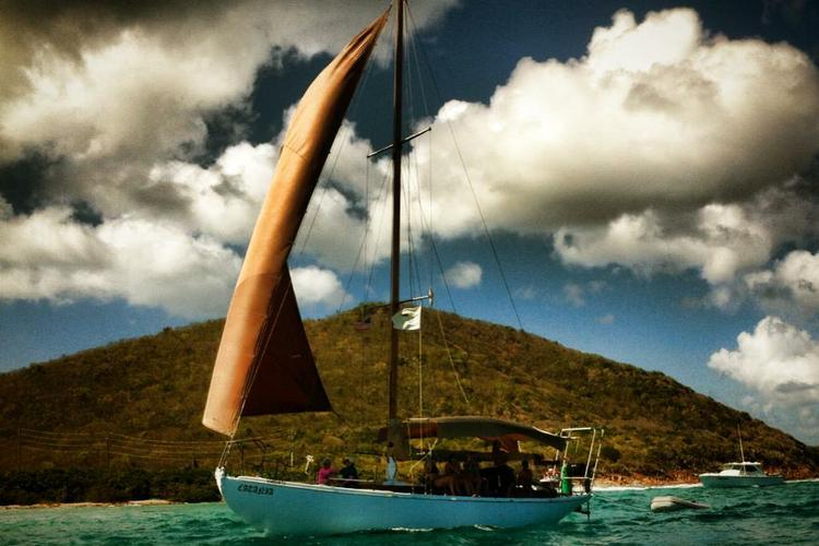 Classic boat rental in American Yacht Harbor Marina, U.S. Virgin Islands