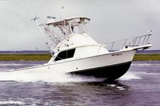 Catch the Big Fish on this Comfortable Bertram Flybridge