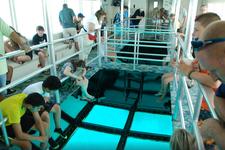 thumbnail-5 Custom 70.0 feet, boat for rent in Key Largo, FL