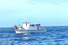 Great Offshore Fishing on this Family Operated Charter