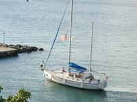 thumbnail-1 Morgan 46.0 feet, boat for rent in Charlotte Amalie, VI
