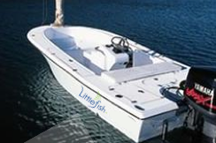 Discover Key Largo surroundings on this Custom Cape Island boat