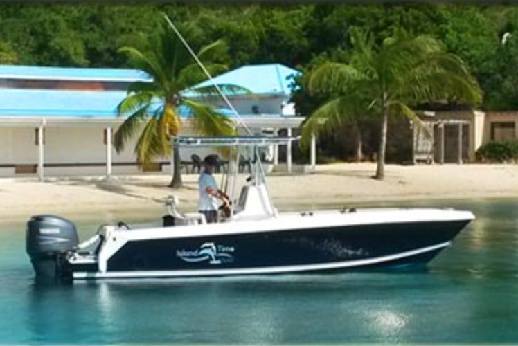 You Need a Boat for the BVIs and We Have You Covered!