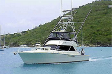 thumbnail-1 Viking 45.0 feet, boat for rent in St. Thomas, VI