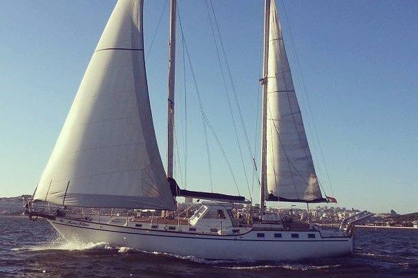This fantastic and luxury sailboat is ready for you
