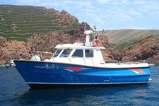 thumbnail-1 Custom Made 32.0 feet, boat for rent in Peniche, PT