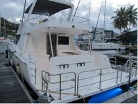 thumbnail-1 Power Catamaran 52.0 feet, boat for rent in Tortola, VG