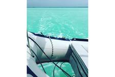 thumbnail-7 Leopard 42.0 feet, boat for rent in Key West, FL