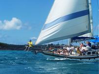 thumbnail-2 Custom 54.0 feet, boat for rent in Sint Maarten, AN