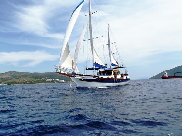 Sail Split region waters on a beautiful Unknown Hera