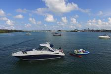 thumbnail-8 Sea Ray 38.0 feet, boat for rent in Key Biscayne, FL