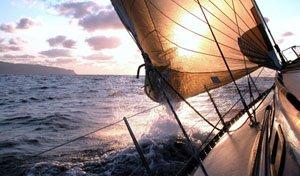 Discover Charleston surroundings on this Cruiser Irwin boat