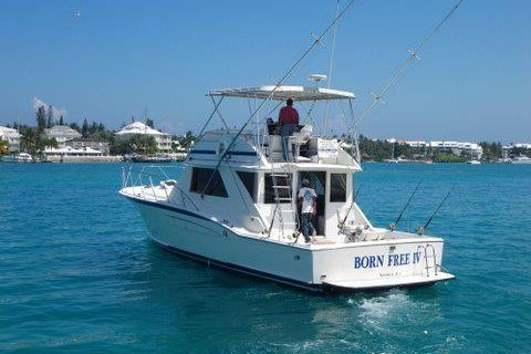 Boat for rent Chris Craft 48.0 feet in Brown's Boat Basin, Bahamas