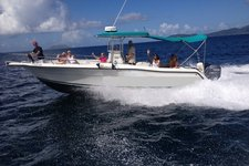 thumbnail-1 Stamas 33.0 feet, boat for rent in St. Thomas, VI