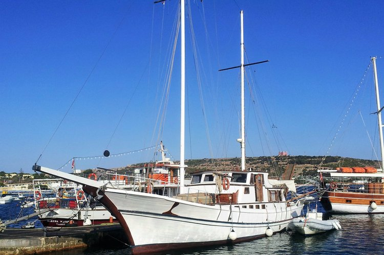 Liveaboard & Diving Safari at Western Sicily, Malta, Tunisia