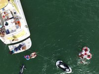thumbnail-9 Sea Ray 54.0 feet, boat for rent in Miami Beach, FL