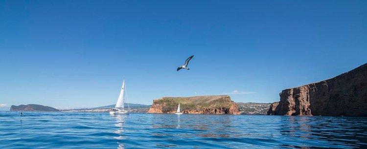 This 37.0' Bavaria Yachtbau cand take up to 6 passengers around Azores