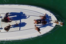 thumbnail-18 Sea Ray 54.0 feet, boat for rent in Miami Beach, FL