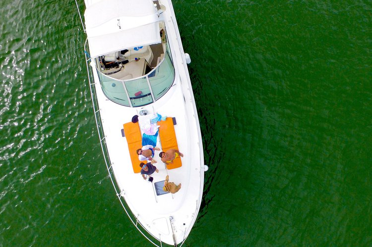 Boat for rent Sea Ray 42.0 feet in Sea Isle Marina & Yachting Center, FL