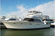 47FT Day Charter to Palomino and Icacos Island