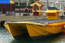 Have fun in Chicago aboard this thrilling speedboat