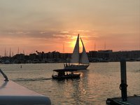 thumbnail-3 Sea Ray 31.0 feet, boat for rent in marina del rey,