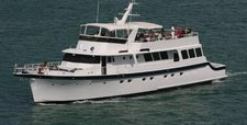 Explore Florida on a luxurious motor yacht