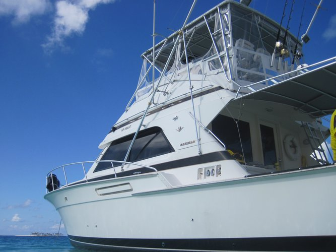 Boat for rent Bertram 43.0 feet in Poop Deck, Yacht Haven, Bahamas
