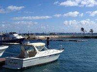 Charter a 32' Tiara in St George, Bermuda
