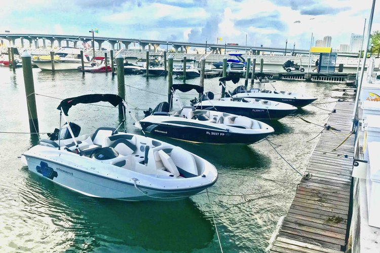 2, 4 or 8 Hours rental - Bayliner Element 16 in MIA