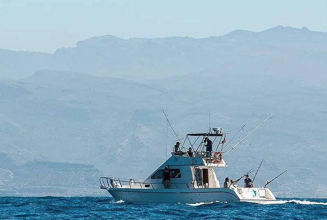 Custom's 35.0 feet in Las Palmas