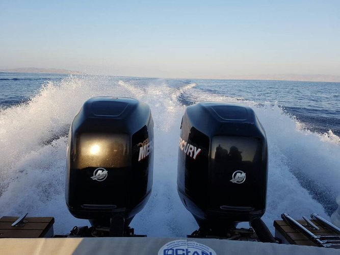 Boat for rent Top Gun 31.0 feet in Lavrio, Greece