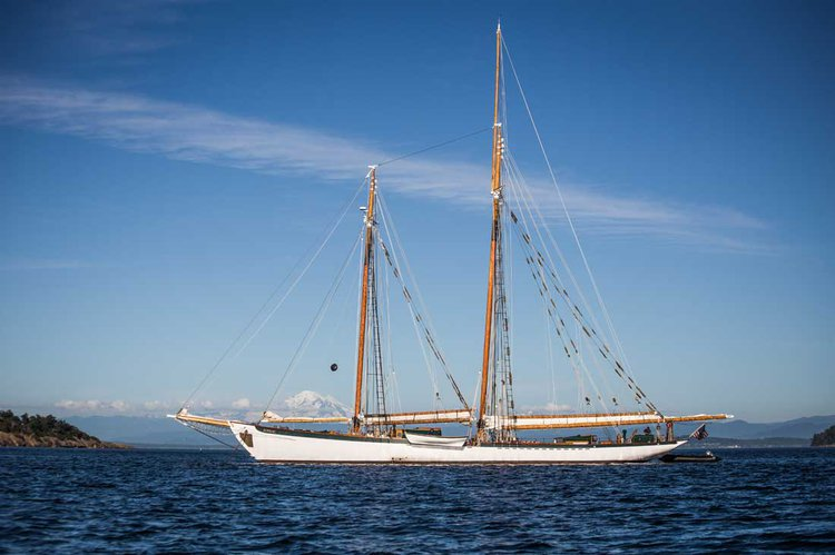 Explore the amazing views in Washington onboard 127' classic windjammer
