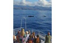 thumbnail-4 Astondoa 45.93 feet, boat for rent in Las Palmas, ES