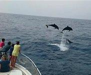 thumbnail-6 Astondoa 45.93 feet, boat for rent in Las Palmas, ES