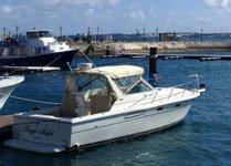 Explore Hamilton, Bermuda onboard 31' Tiara
