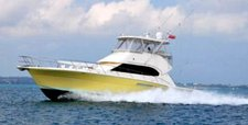 Enjoy fishing in Hamilton, Bermuda onboard 53' fishing boat