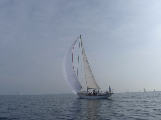 46.0 feet Daily sailing in great shape