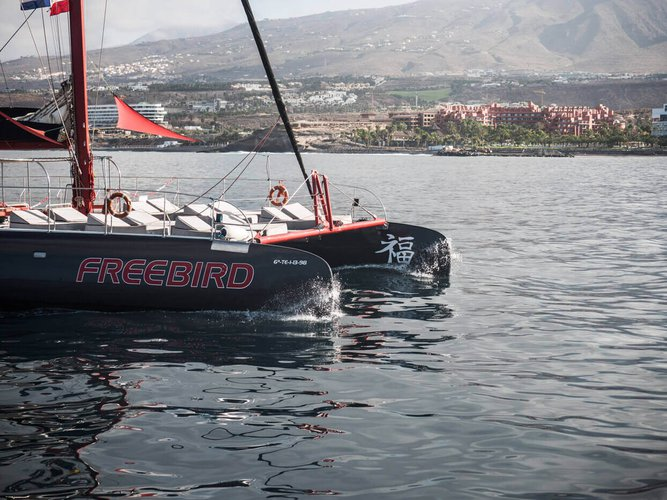 Catamaran boat for rent in Tenerife