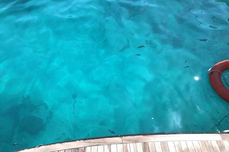 Boat for rent Sea Hawk Taiwan 47.0 feet in Phuket, Thailand
